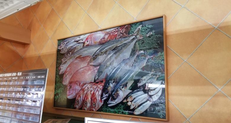 入れ替えた新鮮な魚の写真